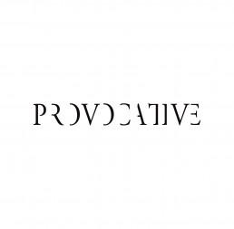 Front Cover of 'Provocative' Portfolio Book