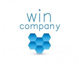 WIN Company – A 6-membered company, focused on SEO